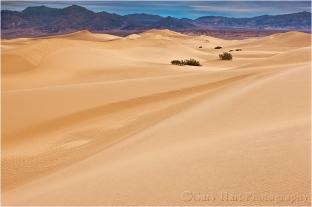 Twilight, Mesquite Flat Dunes, Death Valley