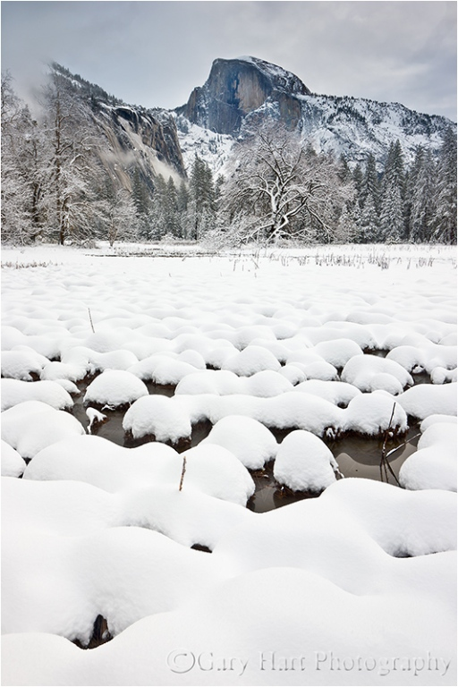 Gary Hart Photography: Fresh Snow, Cook's Meadow, Yosemite