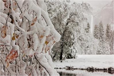 Gary Hart Photography: Fall Into Winter, Bridalveil Fall from Valley View, Yosemite