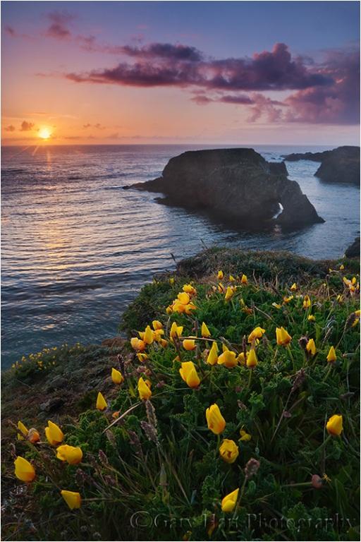 California Sunset, Mendocino Headlands