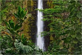 Tropical Plunge, Akaka Falls State Park, Hawaii