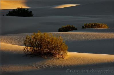 First Light, Mesquite Flat Dunes, Death Valley