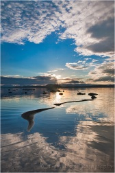 Sunrise Reflection, Mono Lake