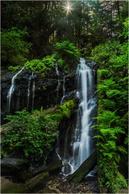 Before Time, Russian Gulch Fall, Mendocino Redwoods, California