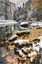 First Snow, El Capitan and the Merced River, Yosemite