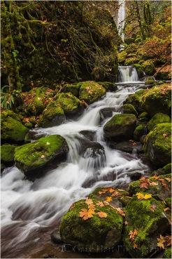 Autumn, Elowah Fall, Columbia River Gorge, Oregon