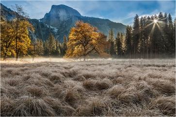 Gary Hart Photography, Autumn Glow, Yosemite