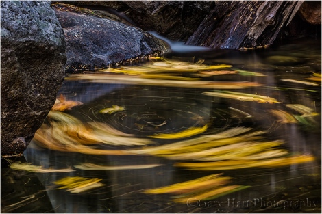 Gary Hart Photography, Autumn Swirl, Yosemite