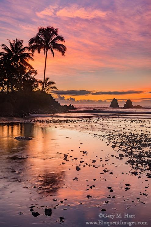 Gary Hart Photography: Tropical Sunrise, Hawaii Big Island