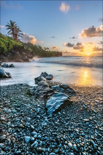 Brilliance, Waiʻanapanapa State Park, Hana, Maui
