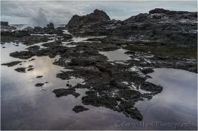 Gary Hart Photography