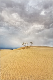 Incoming Storm, Mesquite Flat Dunes, Death Valley