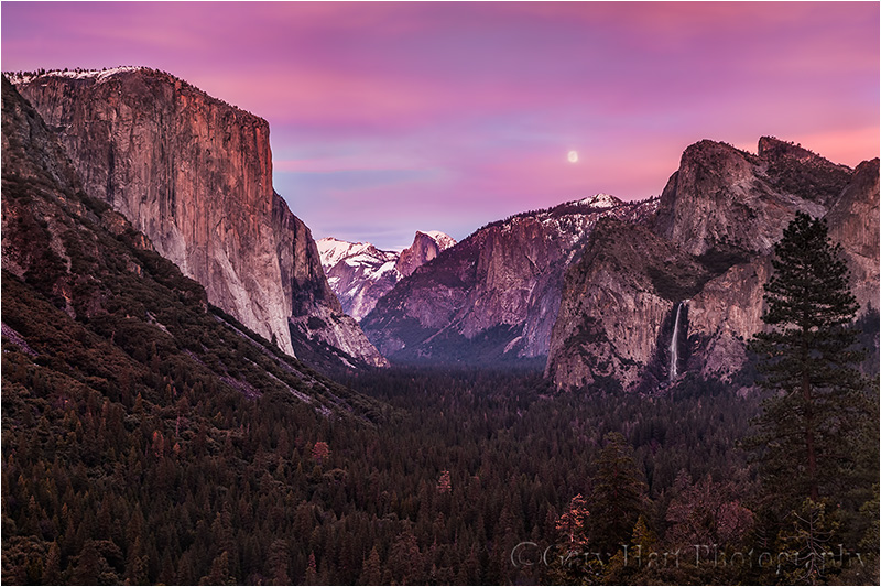 Magenta Moon, Yosemite Valley from Tunnel View, Yosemite