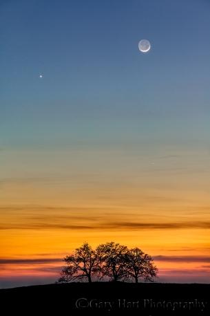 Gary Hart Photography: The Moon and Venus, Sierra Foothills, California