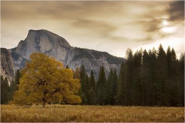 Autumn Morning, Cook's Meadow, Yosemite
