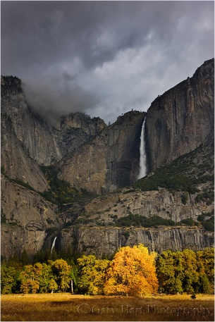 Fall Color, Yosemite Falls, Cook's Meadow, Yosemite