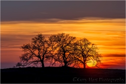 Gary Hart Photography: California Sunset, Sierra Foothills