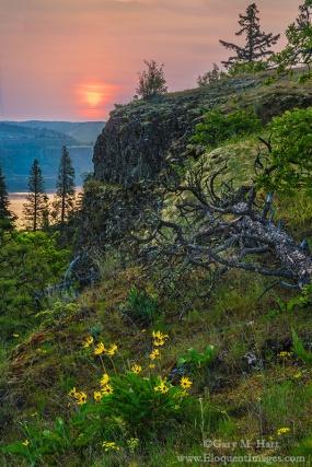 Gary Hart Photography: Spring Sunrise, Memaloose Overlook, Columbia River Gorge, Oregon