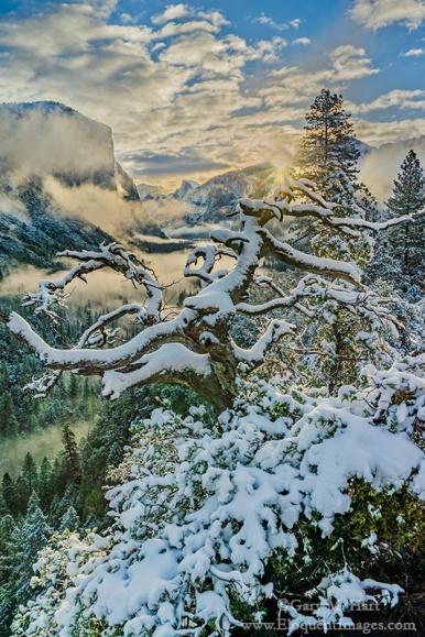 Gary Hart Photography: Morning Glory, Sunrise Clearing Storm, Yosemite Valley