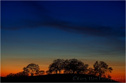 Gary Hart Photography: Tequila Sunset, Sierra Foothills, California