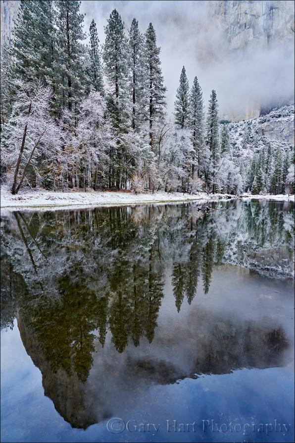 Gary Hart Photography: Winter Storm Reflection, El Capitan, Yosemite