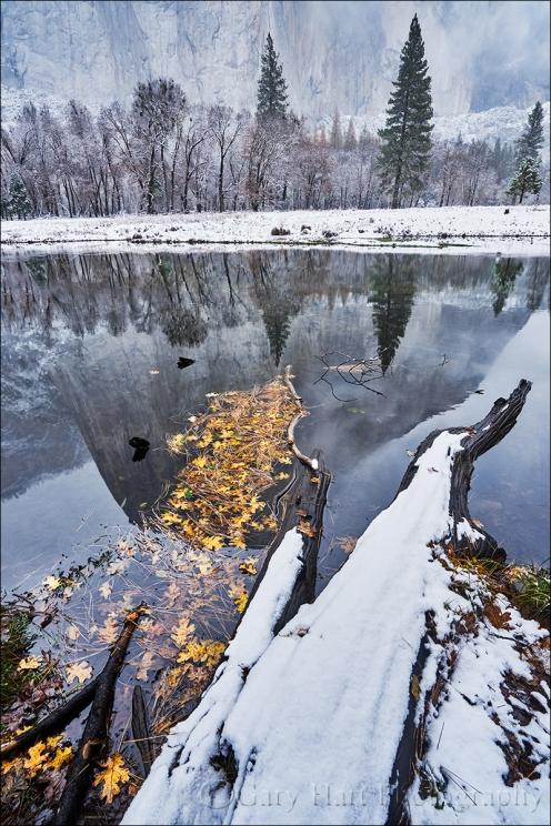 Gary Hart Photography: Winter Arrives, El Capitan, Yosemite