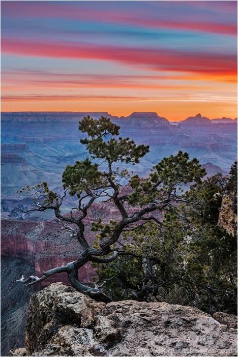 Gary Hart Photography: Grand Morning, Yavapai Point, Grand Canyon