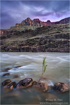 Gary Hart Photography: Nightfall, Colorado River, Grand Canyon