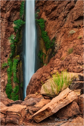 Gary Hart Photography: Nature's Garden, Deer Creek Fall, Grand Canyon