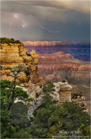 Gary Hart Photography: Electric Scribble, Grand Canyon Lodge, North Rim