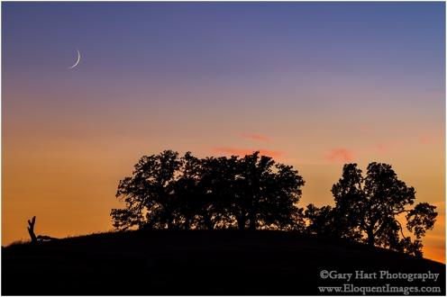 Gary Hart Photography: Sunset Pastoral, Sierra Foothills