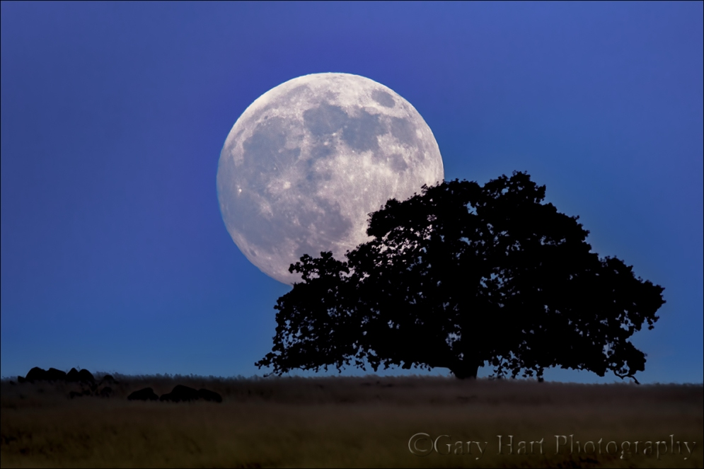 Gary Hart Photography: Foothill Moonrise, Sierra Foothills, California