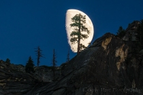 Gary Hart Photography: Big Moon, Yosemite