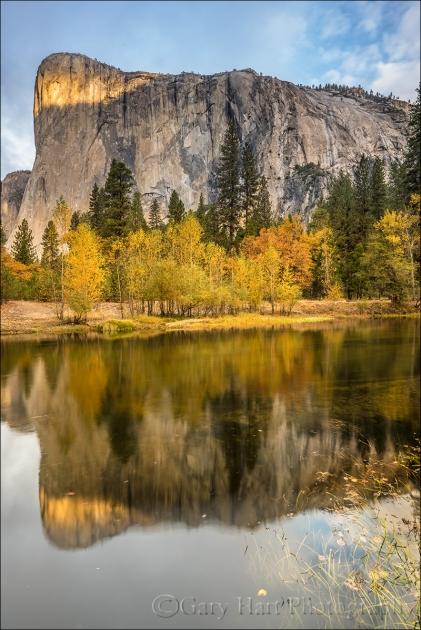Gary Hart Photography: Autumn Morning, El Capitan Reflected in the Merced River, Yosemite