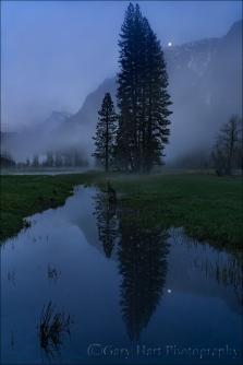Gary Hart Photography: Moonrise Reflection, Leidig Meadow, Yosemite