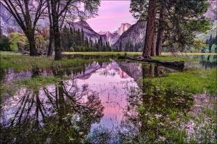 Spring Sunset, Leidig Meadow, Yosemite