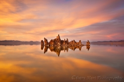 Morning Reflection, Mono Lake