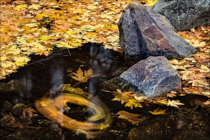 Gary Hart Photography: Autumn Spiral, Bridalveil Creek, Yosemite