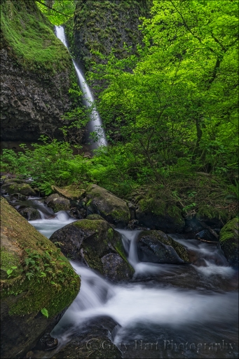 Gary Hart Photography: Downstream, Upper Horsetail Fall, Columbia River Gorge