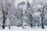 Gary Hart Photography: Gray and White, El Capitan Through the Clouds, Yosemite