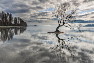 Gary Hart Photography: Wanaka Reflection, New Zealand