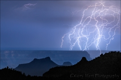Lightning Web, Grand Canyon