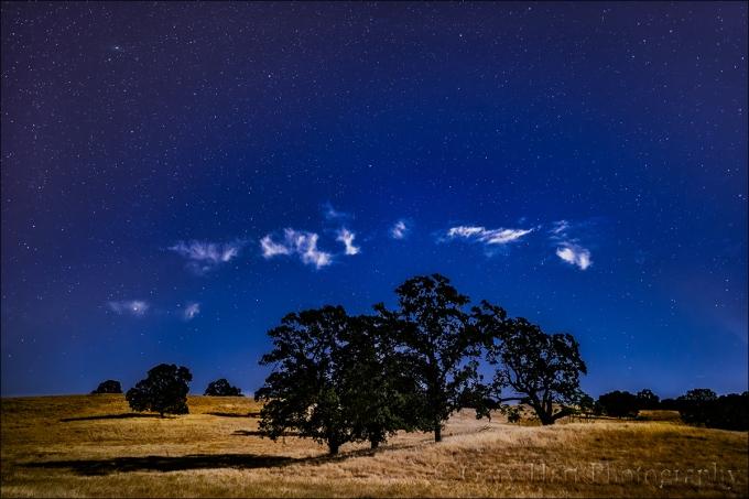 Gary Hart Photography: Moonlight, Sierra Foothills, California