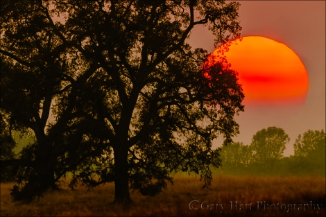 Gary Hart Photography: Sun and Smoke, Sierra Foothills, California