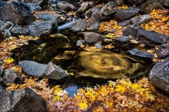 Gary Hart Photography: Color Wheel, Bridalveil Creek, Yosemite