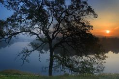 Gary Hart Photography: Sunrise, Lake Natoma, Folsom