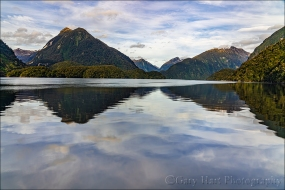 Reflection, Doubtful Sound, New Zealand