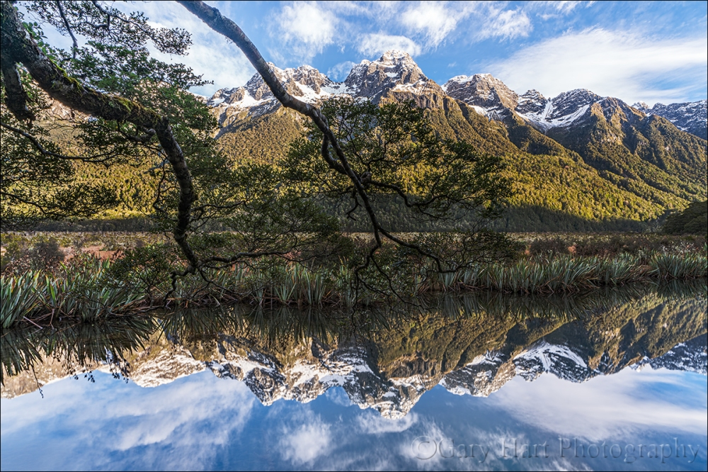 Gary Hart Photography: Reflection, Mirror Lakes, New Zealand