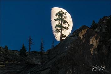 Gary Hart Photography: Big Moon, Valley View, Yosemite
