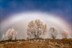 Gary Hart Photography: Fogbow, Wairepo Arm, New Zealand